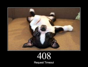 408 - Request Timeout